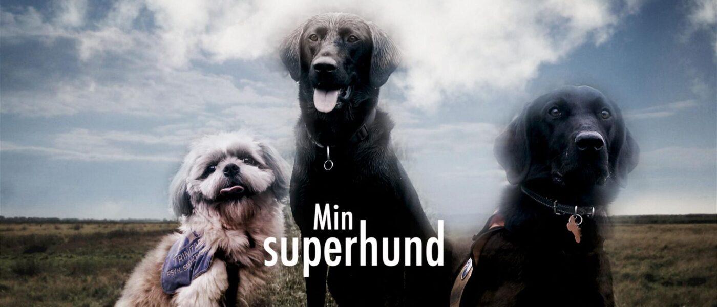 Min Superhund: Et firbenet håb (1:3)